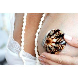 Coquillage allaitement Babyshell  Accueil